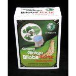 Ginseng Ginkgo Biloba Forte + Rózsagyökér kapszula 30x